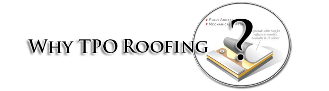 Why TPO Roofing?